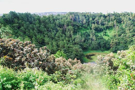Trou aux Cerfs crater, Mauritius
